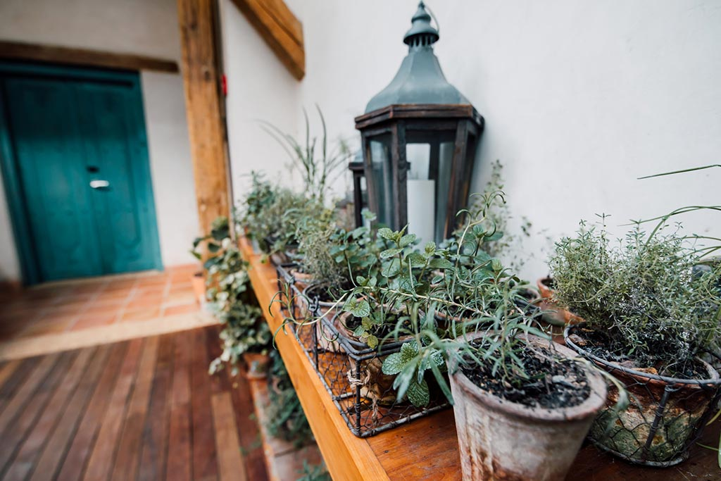 hotel sustentable casa lum huerto dos